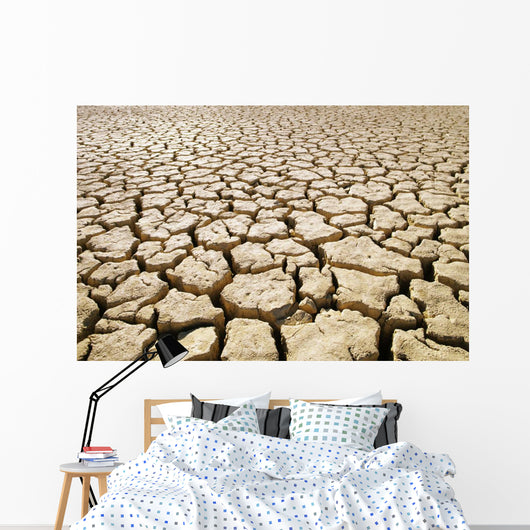 Africa, Namibia, Detail Of Cracked Mud In Dry Lake Bed Wall Mural