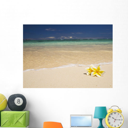 Two Plumerias Resting On The Sand Of A Gorgeous Tropical Beach Wall Mural