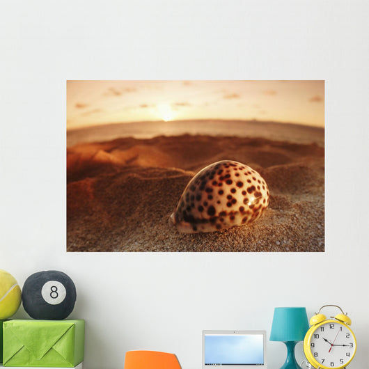 Spotted seashell laying in sand with sun setting behind It Wall Mural