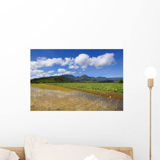USA, Hawaii Islands, Kauai, Scenic mountains and blue sky Wall Mural