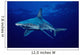 USA, Sandbar Shark in clear blue water near surface Wall Mural