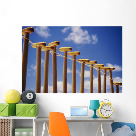 Paddles hanging in row on wire Wall Mural