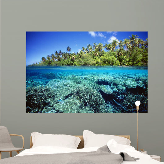 Micronesia, Coral reef Wall Mural
