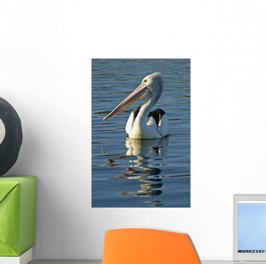 Australia, Pelican Swimming On Calm, Reflective Water Wall Mural
