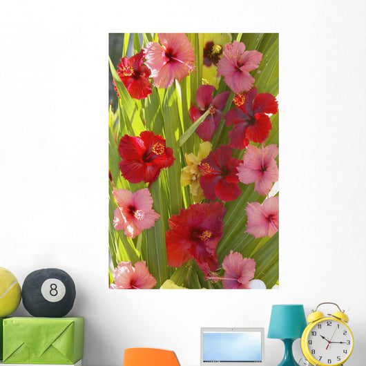 Red And Pink Hibiscus Poking Through Green Leafs Wall Mural