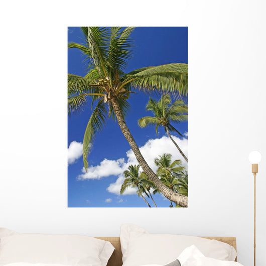 Hawaii, Maui, Kamaole Beach, Palm Trees Against Blue Sky And Clouds Wall Mural