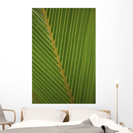 Close-Up Detail Of Coconut Palm Leaf, Yellow And Green Wall Mural