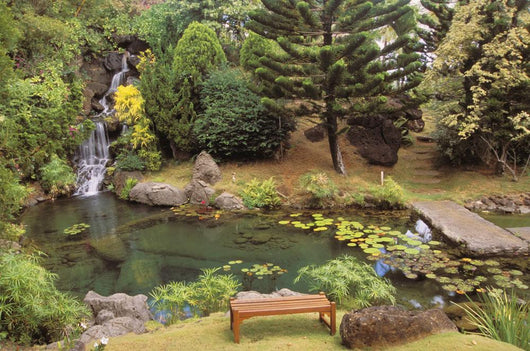Scenery Peaceful Waterfall And Pond Wall Mural