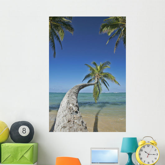 Hawaii, Oahu, Palm Trees Overhang The Ocean On A Clear Blue Day Wall Mural