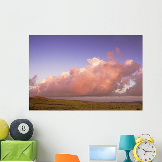 Pink Clouds Over Pasture At Sunrise Wall Mural
