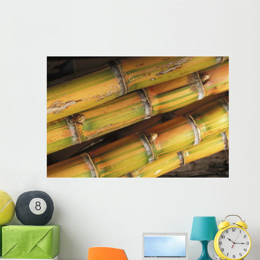 Close-Up Detail Of Mature Sugar Cane Stalks Wall Mural