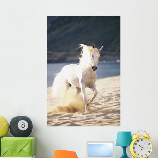 White Horse Running On The Beach Wall Mural