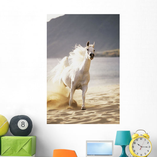 White Horse Galloping Toward Camera On Beach Wall Mural