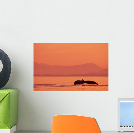 Fluke Of A Humpback Whale At Sunset Wall Mural