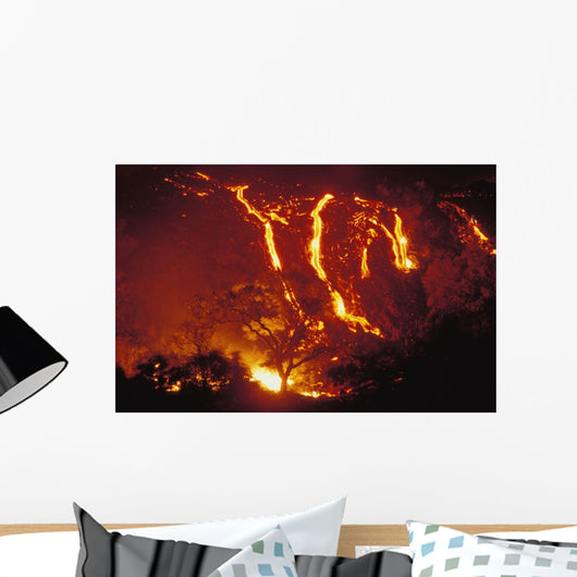 Lava Flows Into Forest Burning Trees Wall Mural