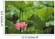 Full Lotus Blossom Amongst Green Leaf And Stems Wall Mural