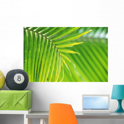 Thailand, Nong Bua Lumphu, Close-Up Of Palm Leaves Wall Mural