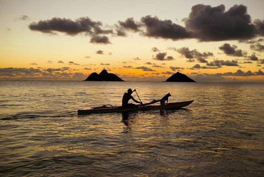 Man And Dog On A One-Man Outrigger Canoe At Sunset Wall Mural