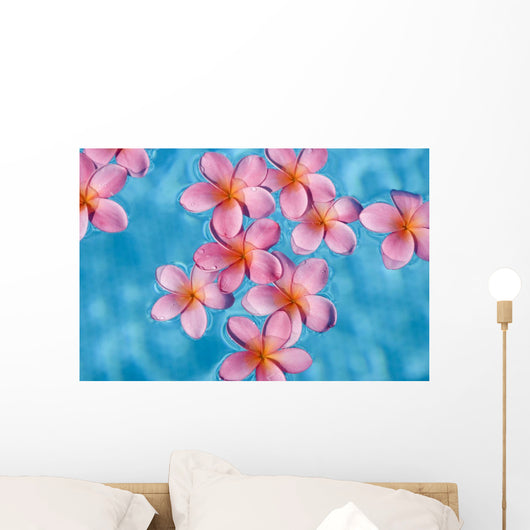 Bright Pink Plumerias Floating In Turquoise Water Wall Mural