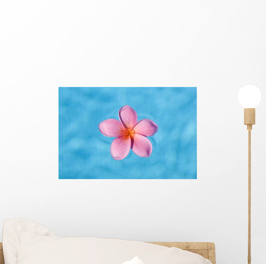 Bright Pink Plumeria Floating In Turquoise Water Wall Mural
