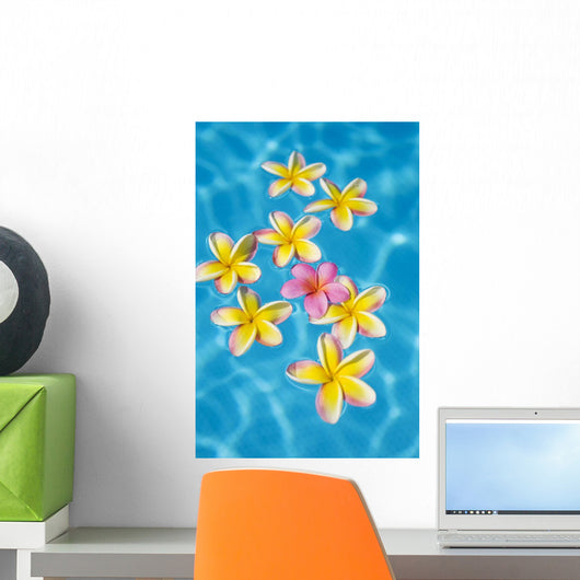 Bright Yellow Plumeria's Floating Around One Pink One Wall Mural