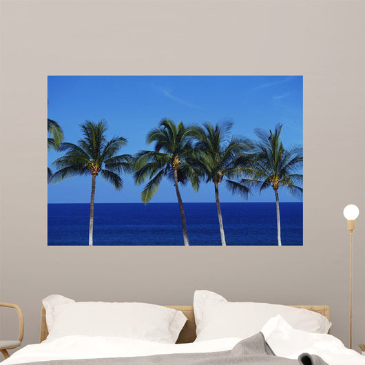 Hawaii, Palm Tree Tops Against Blue Sky And Ocean Wall Mural