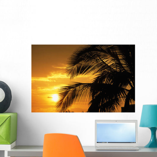 Palm Trees Silhouette With Sunset, Orange Sky And Clouds In Background Wall Mural