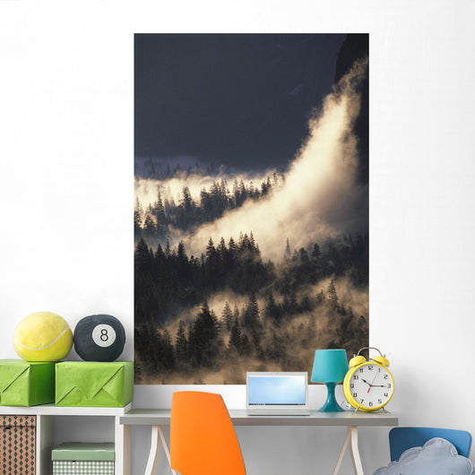 Ground Fog And Pine Trees In Yosemite Valley Wall Mural