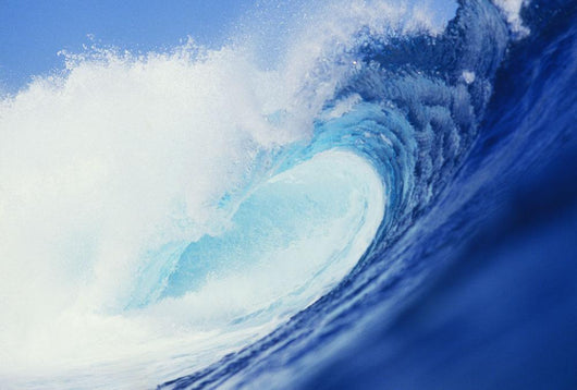Hawaii, Side View Of Blue, Curling Wave Wall Mural