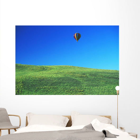 Hawaii, Big Island, Parker Ranch, Waiki'i, Colorful Hot Air Balloon Wall Mural