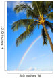 Hawaii, Oahu, Honolulu, Ala Moana Beach Park, Palm Tree And Rainbow Wall Mural