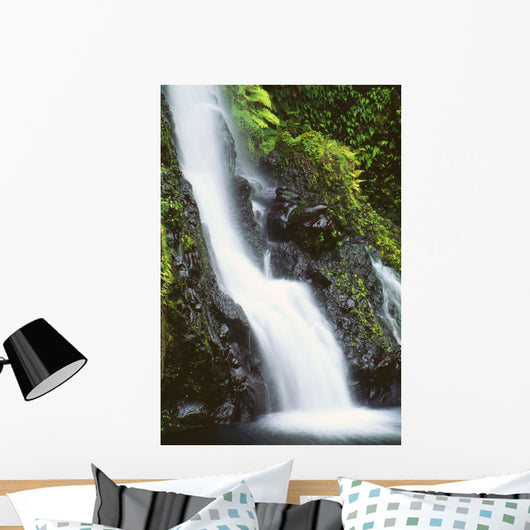 Hawaii, Maui, Foliage And Waterfall Along Hana Highway Wall Mural