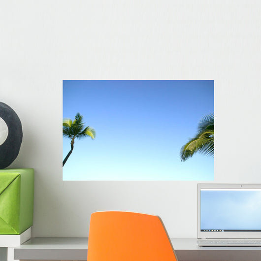 Abstract Perspective Of Coconut Palm Trees And Cloudless Blue Sky Wall Mural
