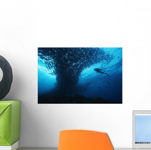 Micronesia, Palau, Scuba Diver With Schooling Bigeye Jacks Wall Mural