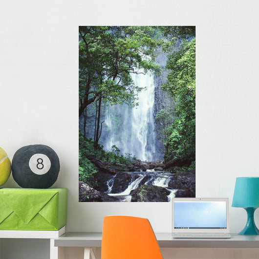 Trees Overlook Stream In Foreground Wall Mural