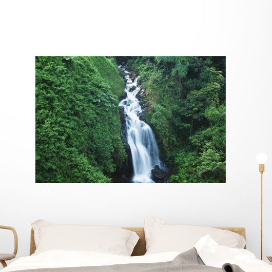 Hawaii, Big Island, Waterful On Hamakua Coast Wall Mural