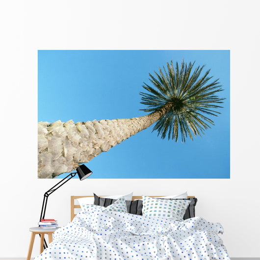 Upward View Of Tall Palm Tree, Thick Bark, Blue Sky In Background Wall Mural