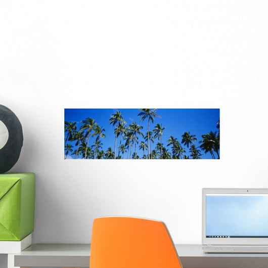 Grove Of Palm Trees, Bright Blue Sky, Panoramic Wall Mural