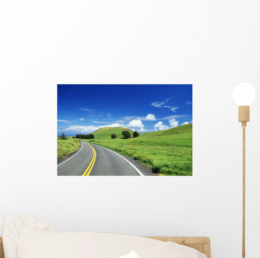 Road Curving Through Lush Pasture Wall Mural