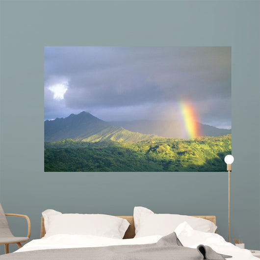 Large Gray Clouds Wall Mural