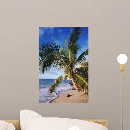 Hawaii, Coconut Laying On A Sandy Tropical Beach Beneath A Palm Tree Wall Mural