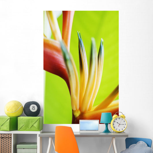Absttract Close-Up View Of Heliconia Wall Mural