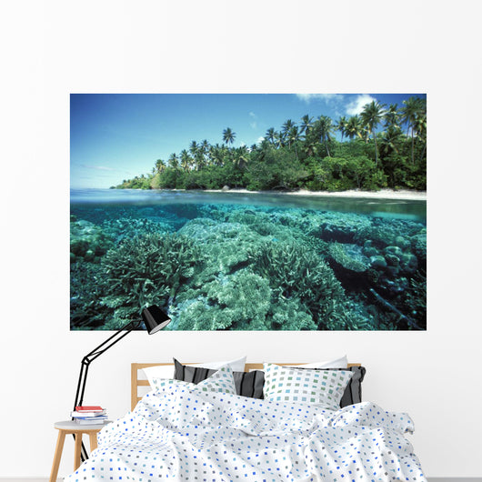 Over/Under Of Hard Coral Reef At Ant Atoll Wall Mural