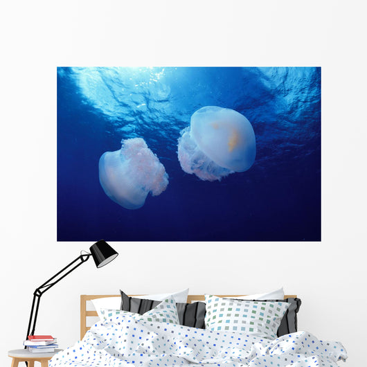 Marshall Islands, Kwajalein Atoll, Pair Of Jellyfish Wall Mural