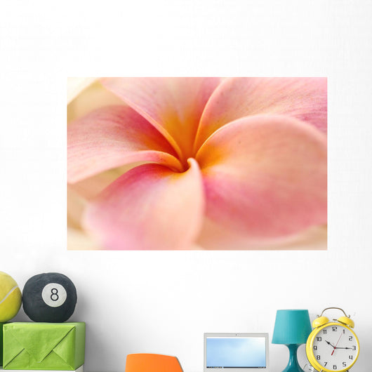 Close-Up Detail Of Pink And Orange Plumeria Flower Wall Mural