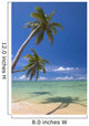Palm Trees Lean And Cast Shadow On Beach Wall Mural