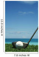 Golf Ball And Driver, Ocean In Blurred Background Wall Mural