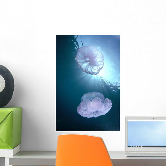 Pair Of Jellyfish Near Surface With Sunburst A88G Wall Mural