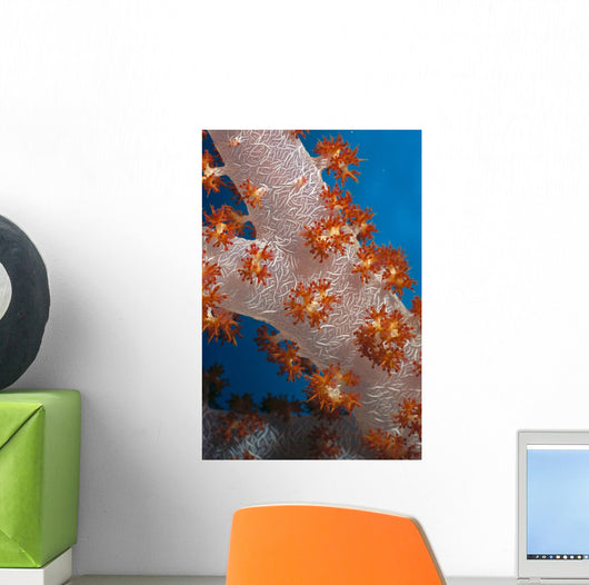 Fiji, South Pacific, Soft Coral, Extreme Close-Up Detail A91G Wall Mural