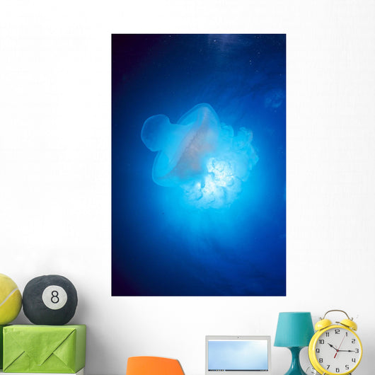Australia, Jellyfish Illuminated By Sunburst A88J Wall Mural